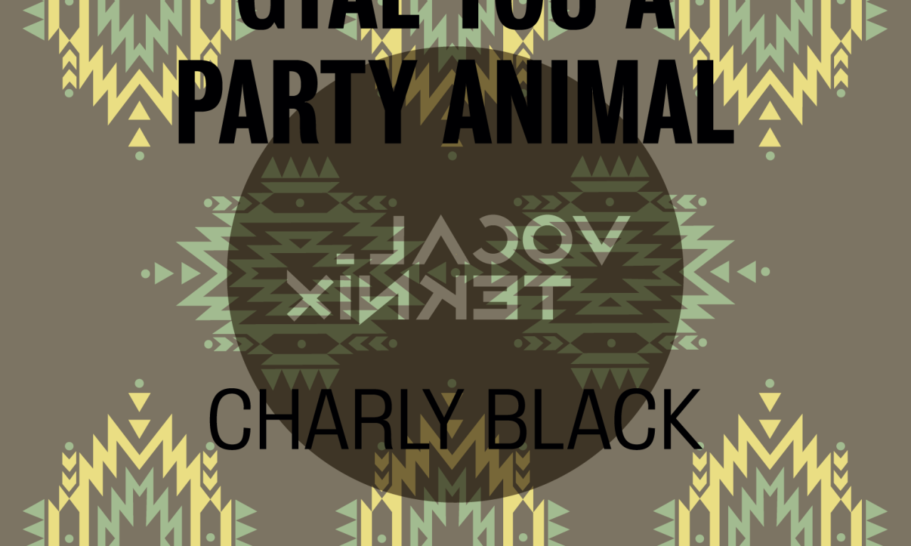 CHARLY BLACK FT DADDY YANKEE - GYAL YOU A …